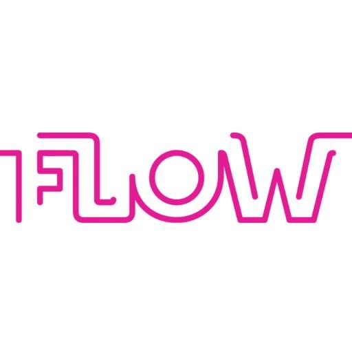 Flow Digital Logo